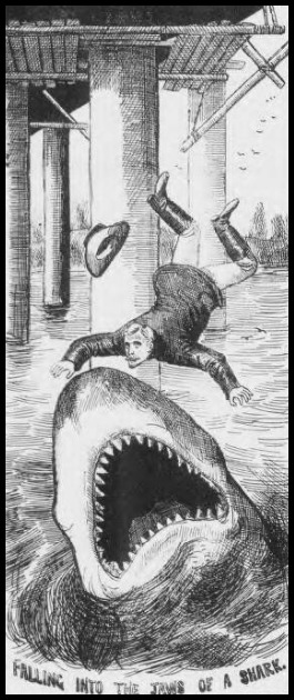falling-into-the-jaws-of-a-shark-illustrated-police-news-february-2-1889